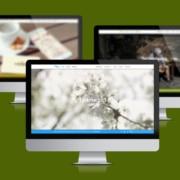 Webauftritt Konzeption, Design